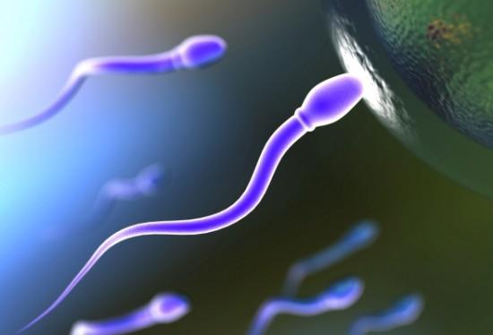 Maggiore fertilità con la dieta mediterranea