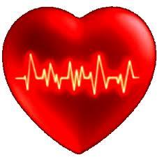 Elettrocardiogramma, cos'è e a cosa serve