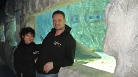 Sposarsi tra gli squali al Tropicarium Park di Jesolo