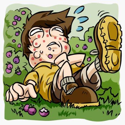allergia punture insetti