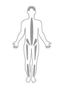 Morbo di Paget: sintomi e cura