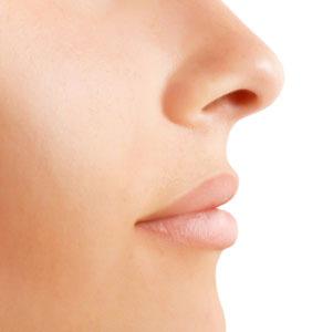 profilo-naso