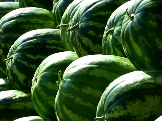 Galleria foto - Le calorie e le proprietà del melone Foto 8