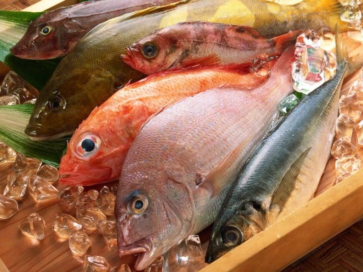 pesce in gravidanza