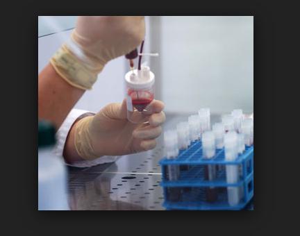 Medicina Rigenerativa: ricreato il primo fegato umano