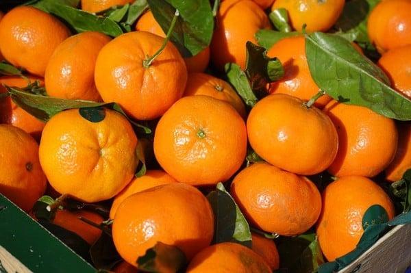 foto-mandarini-mandarinetto-liquore