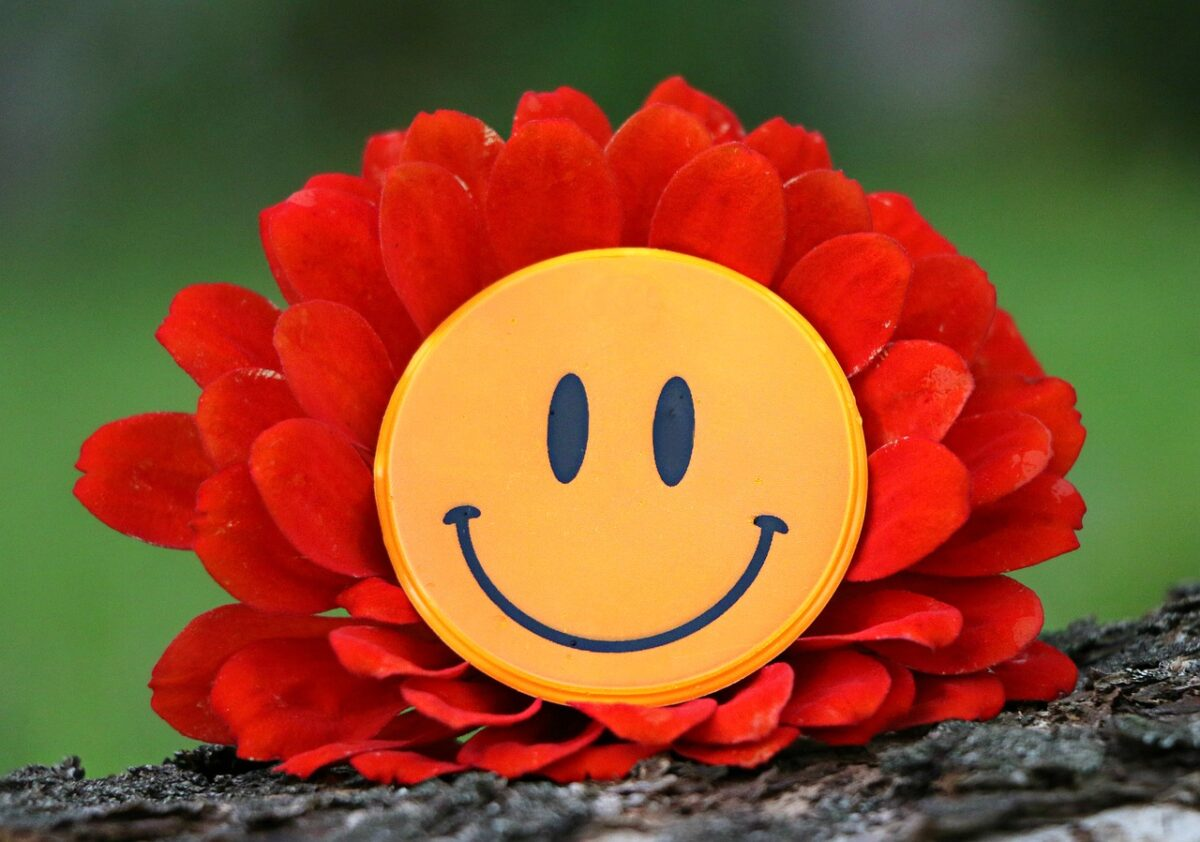 smile-1539196-1280 klimkin Pixabay