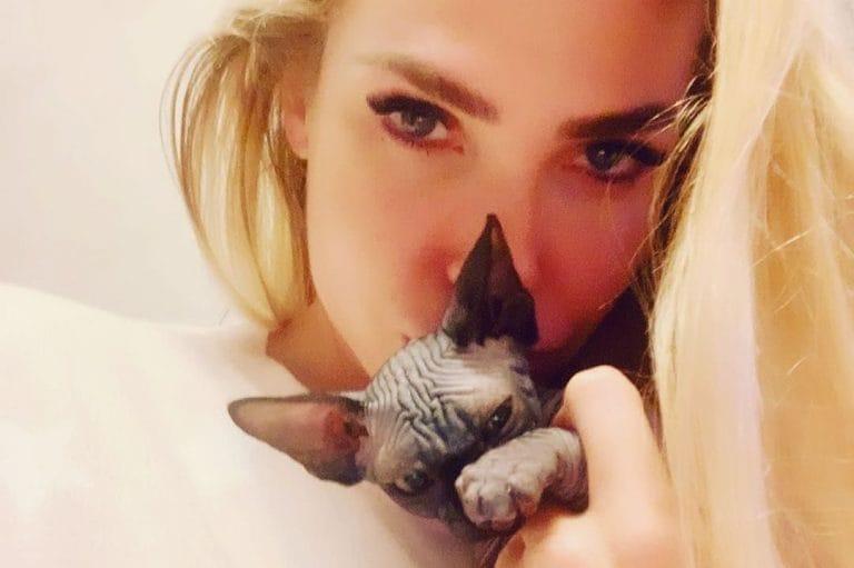 ilary-blasi-presenta-il-suo-nuovo-gatto-donna-paola-768×511