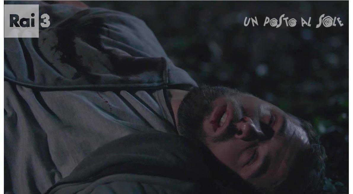 Leonardo nel bosco ferito
