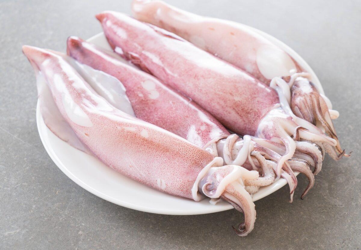Tagliatelle con i calamari