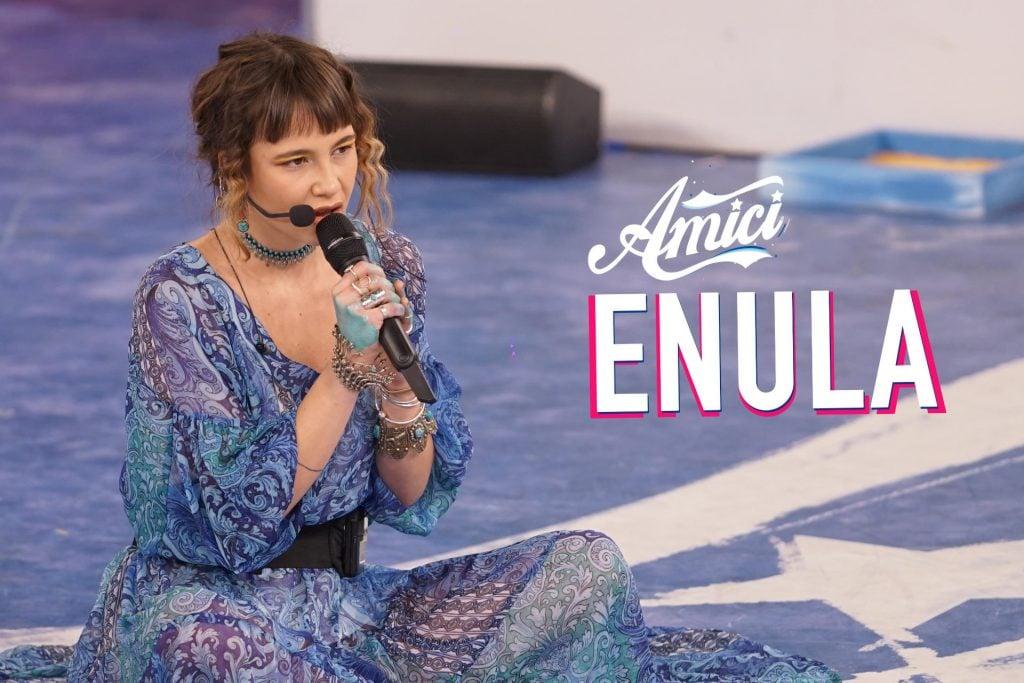 Enula-1024×683
