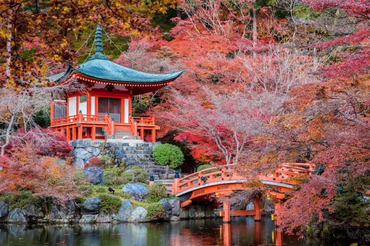 Luna di miele in Giappone? Consigli utili e periodo migliore