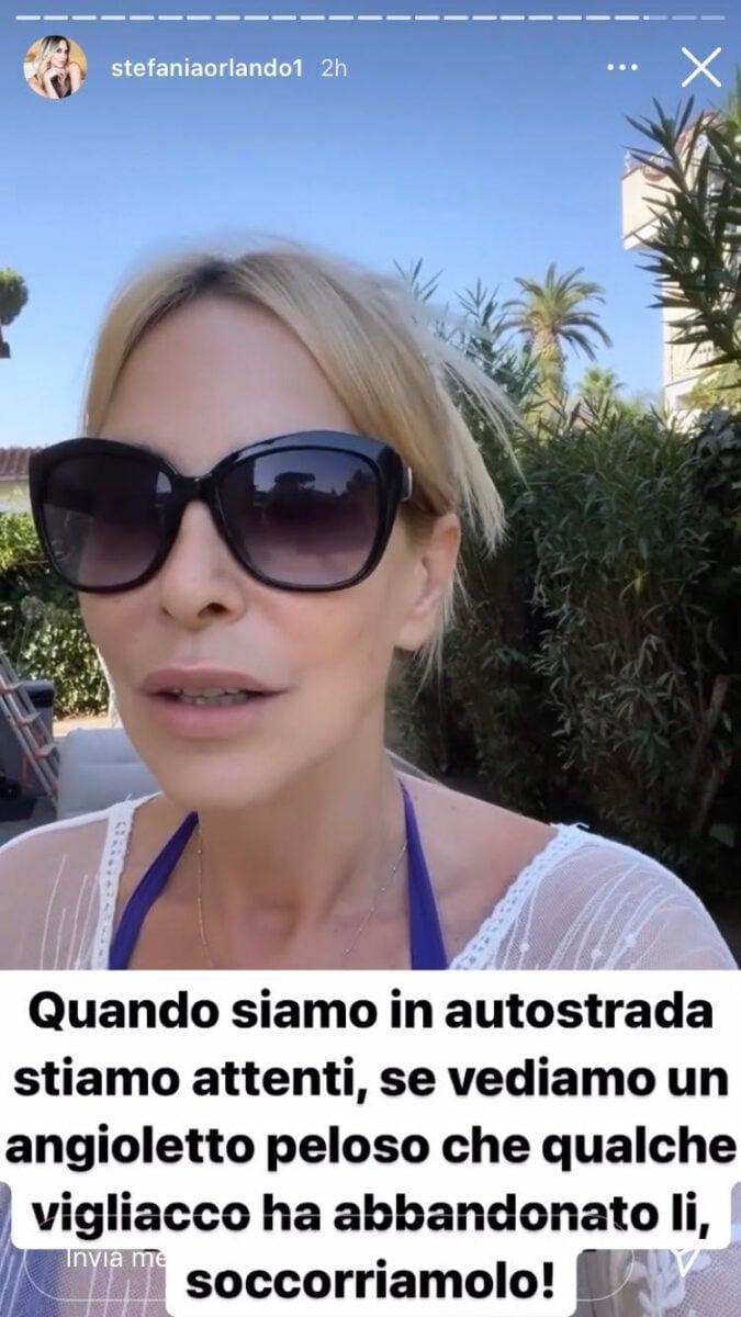 21:00 – Stefania Orlando contro l'abbandono dei cani